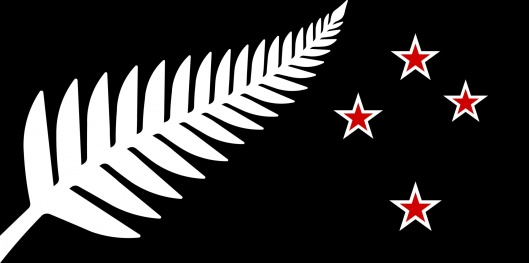 Source: https://www.govt.nz/browse/engaging-with-government/the-nz-flag-your-chance-to-decide/gallery/design/28206